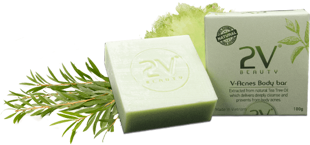 xa-phong-v-acnes-body-bar